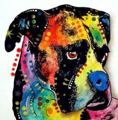 Blue nose Boxer - Dean Russo