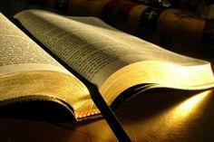 Lee la Biblia en un año: ¿Ha leído alguna vez toda la Biblia?