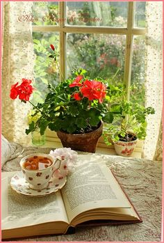 SIMPLE PLEASURES...Lovely window looking out on a beautiful day... red geraniums, a good book, a tasty brew!!  Simple pleasures are the very best kind!!