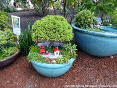 Miniature garden 'scape'!