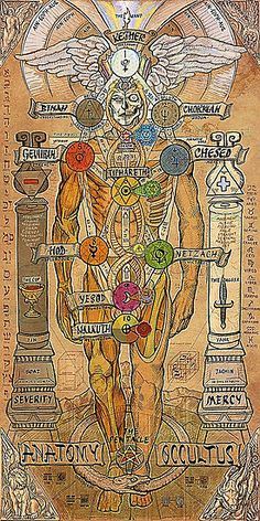 Anatomy witchcraft Sephiroth pentagram pentacle occult mercy tree of life occultism kabbalah Qabalah thelema Occultus severity Kether the occultus Wiccan, Magick, Witchcraft, Les Chakras, Esoteric Art, Occult Art, Occult Books, Occult Symbols, Masonic Symbols
