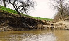 A damaged levee on the Feather River, downstream of Oroville Dam.