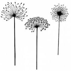 Dandelions                                                                                                                                                                                 Mehr