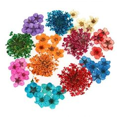 Real Dried Flowers Nail Art Accessories - 12 Style Sets  #bundlemonster #shopbm