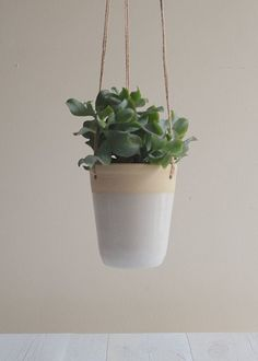 Stoneware Hanging Planter - Succulent Planter - Ready to Ship £26.00