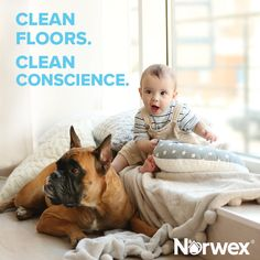 The Norwex mop system is top dog when it comes to keeping your floors clean.