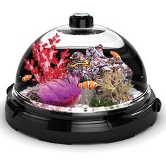 The Tabletop Saltwater Aquarium $120 This 3 gal tank has a neat feature to where you dont even have to remove the fish or water to clean the dome.