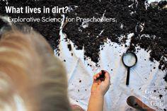 What lives in dirt? Explorative science for preschoolers   Co žije v hlíně?