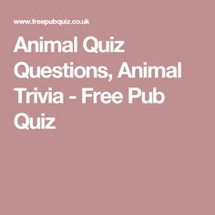 Animal Quiz Questions, Animal Trivia - Free Pub Quiz