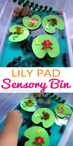 This Lily Pad sensory bin is SO FUN and so easy to make! What a great way to teach kids about the letter L! Toddler Learning, Preschool Learning, Preschool Crafts, Learning Activities, Teaching Kids, Activities For Kids, Sensory Tubs, Sensory Activities, Infant Activities