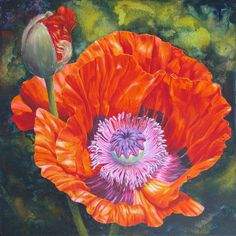 Marianne Broome — Poppy Love (720x720)