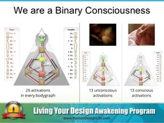 We are a Binary Consciousness 13 unconscious activations 13 conscious activations 26 activations in every bodygraph