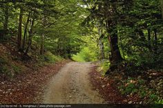 mountain dirt roads pictures - Bing Images