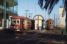 Trams at Glenelg Beach  South Australia