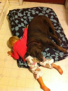 The BFF's can only be achieved after a long day of playing in the park.  Source: i.imgur.com