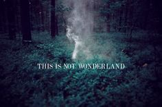 This is not Wonderland by Aleksandra Zaborowska, via Behance