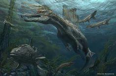 *Spinosaurus swimming. Art by Davide Bonadonna.