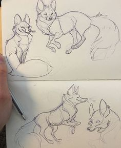 Ideas drawing wolf cartoon art for 2019 Doodle Drawing, Fox Drawing, Furry Drawing, Drawing Sketches, Fox Cartoon Drawing, Animal Sketches, Animal Drawings, Cool Drawings, Drawing Animals