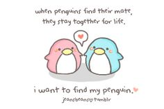 Jeansbeans on Pinterest | Hafiz, Penguin Love and What Is Love
