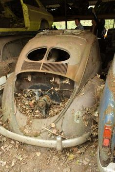 Volkswagen, Rust In Peace, Vw Cars, Lifted Ford Trucks, Abandoned Cars, Commercial Vehicle, Bugatti Veyron, Barn Finds, Vw Beetles