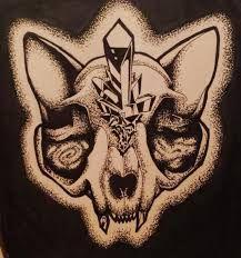 Image result for cat skull
