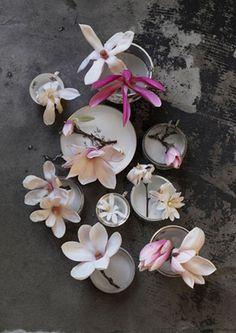 Magnolias by Maria Grossmann
