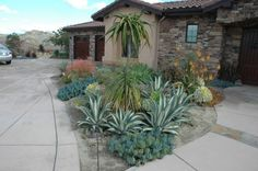 89 best arizona desert landscaping interiors images on pinterest