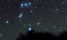 Pioggia di stelle cadenti