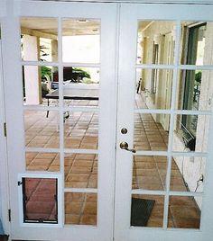 Doors, Custom Door, Interior Design Elements, Glass French Doors, Innovation Design, Interior Barn Doors, French Doors, Door Design, House Hunters
