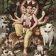 Hindu Deities, Hinduism, Karate Kid 2010, Ganesh Photo, Shivaji Maharaj Hd Wallpaper, Swami Samarth, Lakshmi Images, Ganesh Images, Ganesha Art