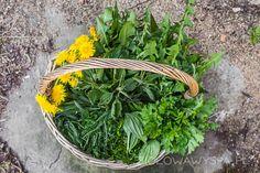 Nalewka na dobrą krew   Ziołowa Wyspa   Małgorzata Kaczmarczyk Parsley, Healthy Living, Herbs, Drinks, Plants, Drinking, Beverages, Healthy Life, Herb