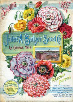 John A. Salzer Seed Co. catalogue Spring 1897