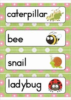 Most Popular Teaching Resources: Spring Word Wall Vocabulary