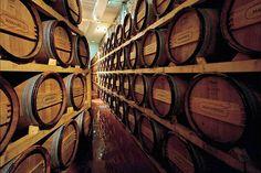 TASTE THE WINE. Il Montepulciano d'Abruzzo ai Salotti del Gusto dell'Alta Badia. Grazie a Azienda Agricola Masciarelli
