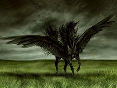 creatures horse fantasy mythical dark 3d mythological