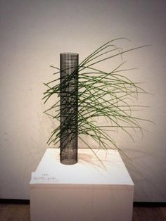 zoukei ikebana, sculptural arrangement using scouring rush and plastic netting