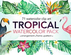 "Check out new work on my @Behance portfolio: ""TROPICAL Watercolor clip art pack!"" http://be.net/gallery/54384829/TROPICAL-Watercolor-clip-art-pack"