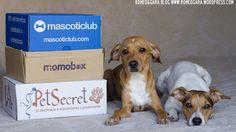 @petsecret, @mascoticlub y Momobox son cajas de suscripción para mascotas. ¿Con cuál te quedas?   www.romeogara.wordpress.com