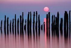 Pink pong by Marzena Wieczorek Landscape Photos, Landscape Photography, Seattle Skyline, New York Skyline, Photos Of Eyes, World's Biggest, Best Photographers, Seaside, Photo Galleries