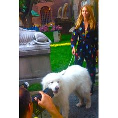 #tbt to my summer fling with @caradelevingne. I know she would still be my bae if the paparazzi would have just left us alone. - Photo: Courtesy of Liger the Great / @ligerthegreat
