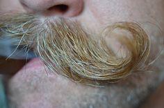 High Def moustache!