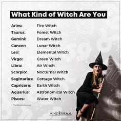 Sagittarius, Zodiac Cusp, Zodiac Traits, Aquarius, Water Witch, Dark Witch, Zodiac Funny, Zodiac Memes, Cancer