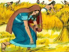 Ruth op het korenveld, 11 Bijbelplaten voor het digibord, kleuteridee.nl , Bijbelles voor kleuters.