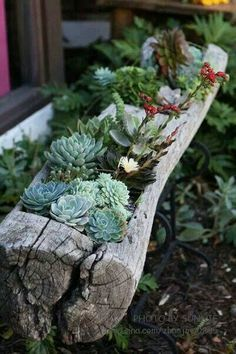 upscaled planters - Google Search