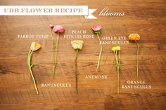 Flower Recipes on Utah Bride Blog - Lindsey Orton Photo
