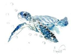 jellyfish turtle painting - Google Search