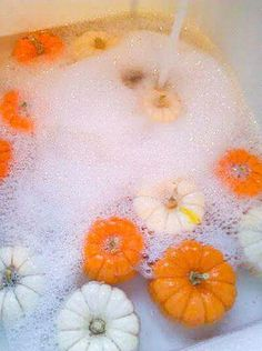Pumpkins with Bleach for Preservation