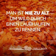 47 Einzigartige Bilder Zu Herbst Sprüche Fall Sayings Good