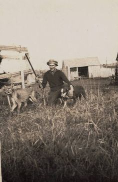 The last known photograph of a thylacine in the wild.