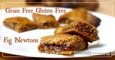Grain Free Fig Newtons   www.homemademommy.net